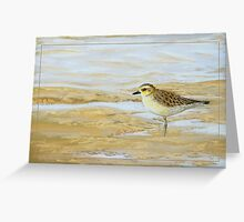 Shore - Pacific golden plover (Pluvialis fulva) Greeting Card