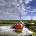 Sea Dog by Nigel Bangert