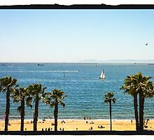 Sunny Day at the Beach by Jason Stabile