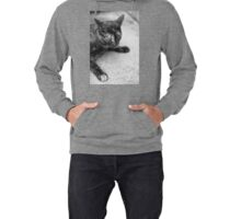 Street Cat (non-clothing products) Lightweight Hoodie