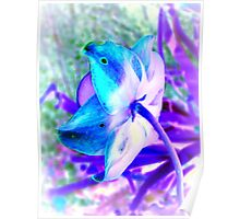 Shy Flower - Cool Colors Poster