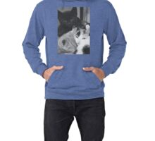 Pile of kittens (non-clothing products) Lightweight Hoodie