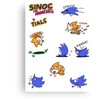 Sinoc the Hodgeheg Canvas Print
