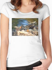 Swamp Hen on Nest Women's Fitted Scoop T-Shirt