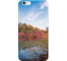 Daylesford Colour iPhone Case/Skin