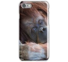 Orangutang iPhone Case/Skin