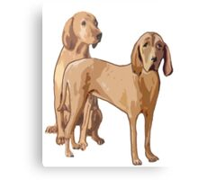 Redbone Coonhounds Canvas Print