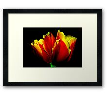 red with the golden accents 02 Framed Print