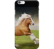 Gypsy Stallion 1 iPhone Case/Skin