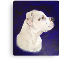 The Dog (Staffordshire Bull Terrier) Canvas Print