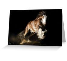 Bjorn, Gypsy Stallion Greeting Card