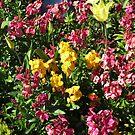 Flowerbed - Preston Temple by BlueMoonRose