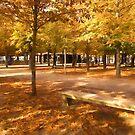 Impressions of Paris - Tuileries Garden, Come Sit a Spell by Georgia Mizuleva
