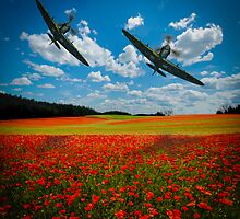 Spitfires Tribute Poppy Flypast  Oil Painting by outlawalien
