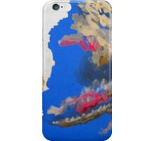 Summer Sunset Sky iPhone Case/Skin