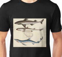 Naturgeschichte in Bildern mit erläuterndem Text E Strack 1820 Lief 4 Fish 004 Unisex T-Shirt