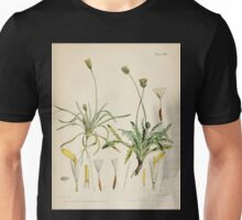 The botany of the Antarctic voyage of H M  discovery ships Erebus and Terror in the Years 1839 1843 Joseph Dalton Hooker V1 097 Unisex T-Shirt