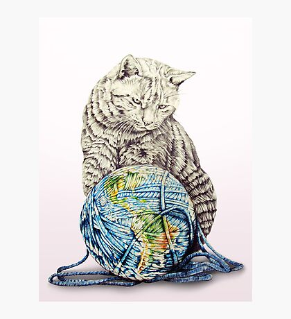 Our feline deity shows restraint Photographic Print