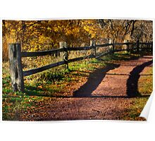 Fence along Path Poster