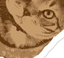 Portrait of cat Sticker