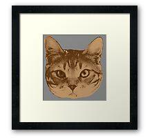 Portrait of cat _2 Framed Print