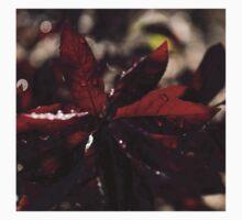 Raindrop Jewels and Vigorous Reds Kids Tee
