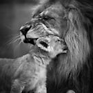 Love you dad by Brad Francis