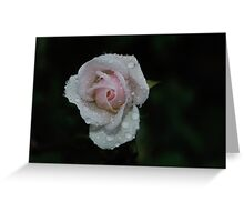 french lace Greeting Card