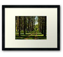 Popular Plantation Framed Print