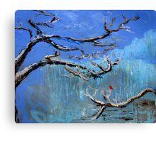 Red Bird in Winter Canvas Print