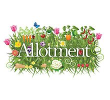Allotment banner with grass, flowers and vegetables Photographic Print