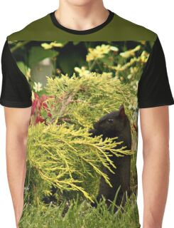 Black Squirrel Looking for Food Graphic T-Shirt