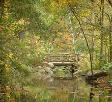 bridge by Chris Moll