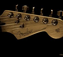 Fender Stratocaster  In her glory by Deewinged