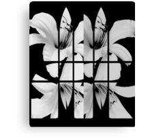 segMENted Canvas Print