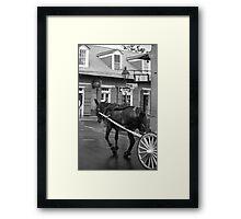 New Orleans - Bourbon Street Horse Framed Print