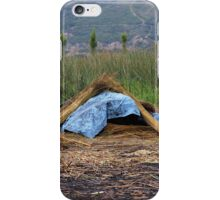 Drying Reeds in a Field iPhone Case/Skin