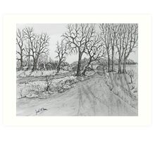Creekside Road Art Print