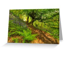 Bluebell Woodland (HDR) Greeting Card