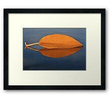 Fall leaf on the Kona Wall Framed Print