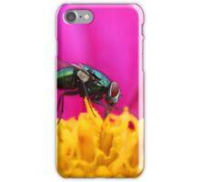 Fly on a Purple Flower iPhone Case/Skin
