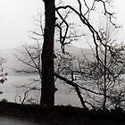 Wintery Derwent Water by amylw1