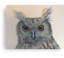 Owl with amber eyes Canvas Print