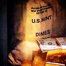 Dimes Dollars and Gold by Susan Savad