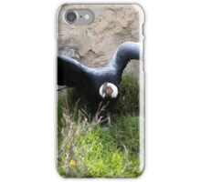 Andean Condor With Spread Wings iPhone Case/Skin