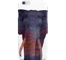 elephant iPhone Case/Skin