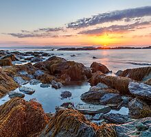 Sunrise at Sachuest Point Wildlife Refuge II by mcdonojj