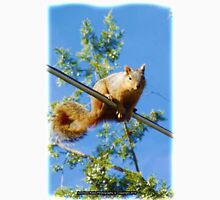 Peanut the Squirrel (2) High Wire Dance | Jeronimo Rubio Photography Unisex T-Shirt