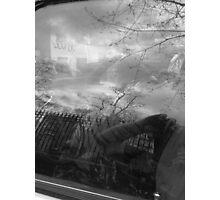 reflection Photographic Print