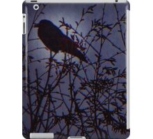 Once Upon A Midnight Dreary iPad Case/Skin